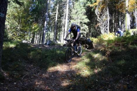 Mountainbiketouren im Bayerischen Wald