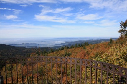 Ausblick vom Hirschenstein im Bayerischen Wald