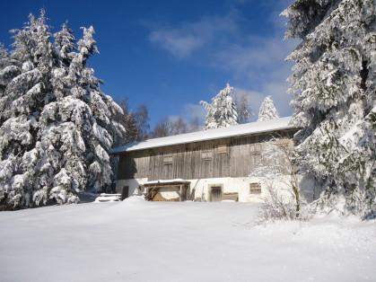 Geführte Schneeschuhtour im Bayerischen Wald